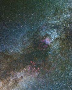 The Cygnus constellation in our Milky Way  #astrophotography #telescope #deepsky #milkyway