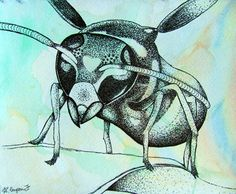 Pen and Ink Stipple Insect - Conway High School Art Project