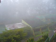 Estación Experimental El Laurel, Edo. Miranda