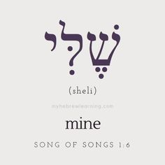"Transliteration: Sheli ⠀⠀⠀⠀⠀⠀⠀⠀⠀⠀⠀⠀⠀⠀⠀⠀⠀⠀⠀⠀⠀⠀⠀⠀⠀⠀⠀ Song of Songs "".my vineyard, mine, I did not keep. ⠀⠀⠀⠀⠀⠀⠀⠀⠀⠀⠀⠀⠀⠀⠀⠀⠀⠀⠀⠀⠀⠀⠀⠀⠀⠀⠀ ""Sheli"" is the Hebrew word which means ""mine,"" or ""belonging to me."" ""Sheli"" is the form Ancient Hebrew Alphabet, Biblical Hebrew, Hebrew Words, Personal Pronoun, Learning A Second Language, Learn Hebrew, Word Study, Torah, Decir No"