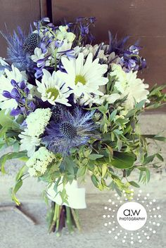 Wildflower bouquet. Daisies, Thistles, and Delphinium. which will be the star? delphiniums or sea holly?