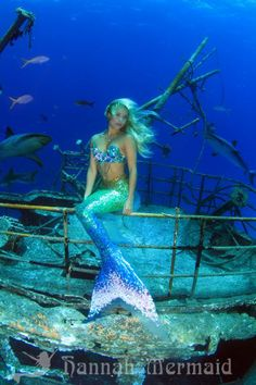 """Icredible, """"real"""" mermaid, go to this site and be amazed: http://hannahmermaid.com/  <3"""