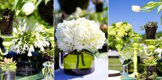 vineyard_wedding_photography_southern_bride_magazine_green_wedding_theme_006