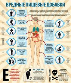 Инфографика. E-добавки