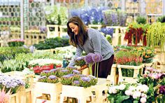 In the latest instalment of her Telegraph column, 'Sport and Social', Pippa   Middleton is up with the larks picking the best bouquets at New Covent   Garden Flower Market.