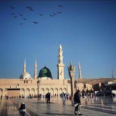 Taj Mahal, Building, Travel, Viajes, Buildings, Destinations, Traveling, Trips, Construction