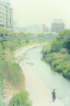 #Cheonggyecheon in Seoul
