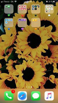Iphone Home Screen: Photo  Colours Tumbrl Wallper