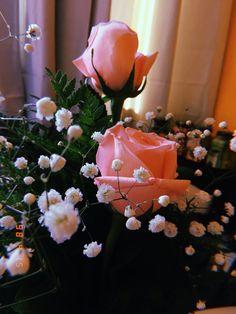 Ig🥀 @pamehernandezz Flower Aesthetic, Retro Pictures, Vintage Photography, Amazing Photography, Instagram Feed, Polaroid, Shots Ideas, Photo Poses, Flower Arrangements