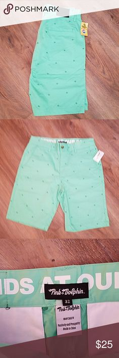 SALE❗️NWT Pink Dolphin Positive Shorts Green 32 New with tags Pink Dolphin  Positive shorts in crisp green size 32 with 10 1/2 inseam. Pink Dolphin Shorts Flat Front