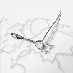 Snowy Owl. . . #honestwork #infographic #meanincfographic #illustration #negativespace #minimalism #minimal #animal #owl #art #paper #papercut #concept #combination #style #exploration #experiment #shadow #papercut #light #whitespace #fly #bird #wild #wildlife #snowyowl #artdirection #blackandwhite #hole #layers
