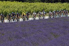 Pe 1 iulie 1903, la ora 15:16, starterul Georges Abran dădea semnul începerii primului Tur al Franţei. Cursa, care la vremea ei reprezenta o premiera prin distanţele lungi pe care cicliştii trebuiau sa le acopere în cele 6 etape, a căpătat rapid popularitate. După 110 ani şi 99 de ediţii, Turul Franţei rămâne în continuare cea mai urmărită competiţie ciclistă a lumii.