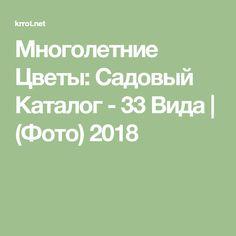 Многолетние Цветы: Садовый Каталог - 33 Вида | (Фото) 2018
