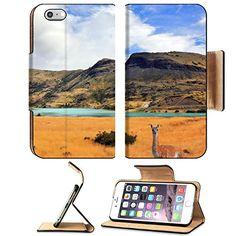 MSD Premium Apple iPhone 6 Plus iPhone 6S Plus Flip Pu Leather Wallet Case iPhone6 Curious guanaco watching the road National Park Torres del Paine in southern Chile Image ID 23687851 * Want additional info? Click on the image.
