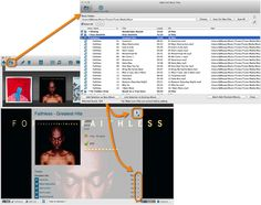 Music Database Software, for cataloging and organizing CDs, vinyl and digital music files