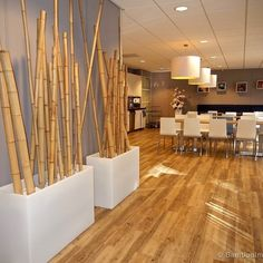 The best Moso bamboo poles in a wide variety of sizes and diameters for immediate shipping from our warehouse in Europe. Decor, Bamboo Decor, House Design, Bamboo Sticks Decor, Open Dining Room, Modern Spaces, Contemporary Dining Room, Bamboo Room Divider, Spa Rooms