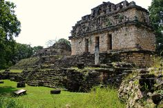 Edificio 39, 40, 41 at Yaxchilan. No one else was here. Very strange with Howler Monkeys in background