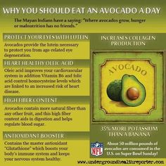 Benefits of Avocados-I eat half of one a day, but wonder if this was put out by the avocado growers assn?