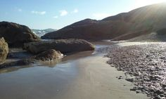 """See 66 photos from 432 visitors about surfing, picnics, and beach. """"Love coming to this beach especially on weekdays when there is no one. Wilsons Promontory, My Happy Place, Playground, Melbourne, Surfing, Earth, River, City, Places"""