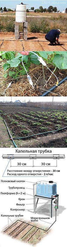 КАК СДЕЛАТЬ ПРОСТЕЙШИЙ КАПЕЛЬНЫЙ ПОЛИВ ИЗ БОЧКИ - Садоводка