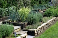 """""""Traditional Tuscan gardens were designed to be just as practical as they were beautiful, providing an assortment of fresh herbs, fruits, and vegetables that filled the air with a sweet aroma and were used in the kitchen to prepare the rich Tuscan cuisine."""""""
