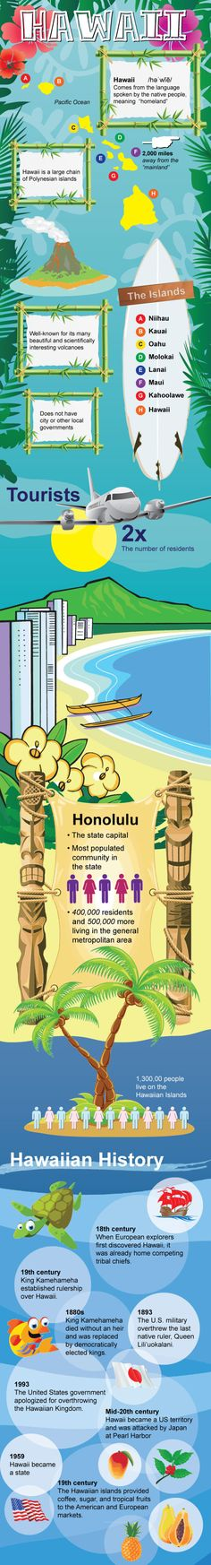 Infographic of Hawaii  facts