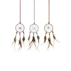 When your dreams escape at nighttime, you'll need to round them up. These delicate feathered dream catchers will bring them back to you in no time.  Find the Feathered Friends Dream Catcher, as seen in the Dome in the Desert Collection at http://dotandbo.com/collections/dome-in-the-desert?utm_source=pinterest&utm_medium=organic&db_sku=96807