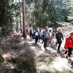 E dopo la #4villeinfiore... Passeggiata nei boschi di Malosco con merenda finale! #mybelsoggiorno#trentinowow #sempreinmovimento #valdinonwow