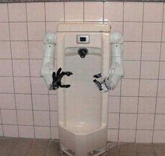 Toilets toilets everywhere!