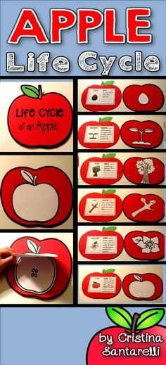 Apple Activities!