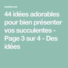 44 idées adorables pour bien présenter vos succulentes - Page 3 sur 4 - Des idées