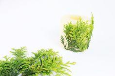 D.I.Y Vela para o Natal com raminhos verdes