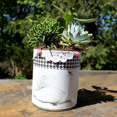 Upcycle a Tin Can into a Pretty Planter - The Graphics Fairy