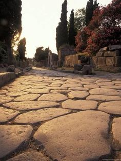size: Photographic Print: Ancient Roman Street Via Delle Tombe in Pompeii, Italy by Richard Nowitz : Subjects Ancient Pompeii, Pompeii Ruins, Pompeii Italy, Pompeii And Herculaneum, Ancient Ruins, Ancient History, Ancient Greece, Stone Road, Poster Online