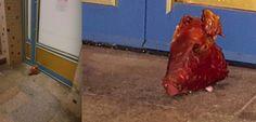 Nach Freitagsgebet: Attacke auf Muslime: Schweinekopf vor Potsdamer Moschee abgelegt - Neueste Nachrichten aus Potsdam