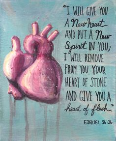 """I will give you a new heart and put a new spirit in you; I will remove from you your heart of stone and give you a heart of flesh"""" (Ezekiel NIV) Unique Quotes, Inspirational Quotes, Cool Words, Wise Words, Journaling, Organ Donation, In Christ Alone, New Heart, How He Loves Us"""