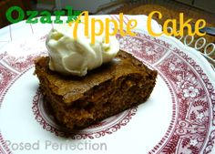 Ozark Apple Cake~ by Posed Perfection