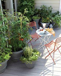 small patio gardening