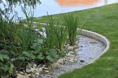Landscape Drainage, Water Garden, Rain Garden, Water Features In The Garden, My Dream Home, Backyard Landscaping, Feng Shui, Color Splash, Stepping Stones