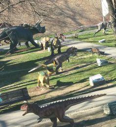 Dino  Park  Belgrad