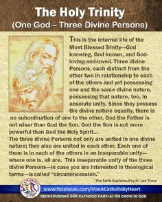 The doctrine of the Blessed Trinity was all but unknown until Christ unveiled the truth. In the Old Testament times the Jews were surrounded by idolatrous nations. More than once the Jews turned from the worship of the one God.  As a consequence, God, though His prophets hammered away the idea of the oneness of God, the unity of God. He did not complicate things by revealing to pre-Christian man that there are three Persons in God. It remained for Jesus Christ to give us this marvellous…