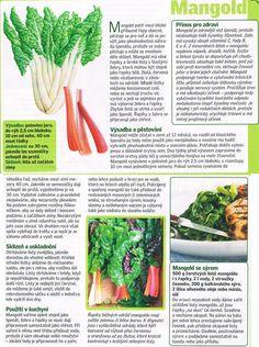 - Dieta Detox, My Secret Garden, Green Beans, Herbs, Entertainment, Gardening, Vegetables, Food, Meal