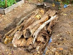 """basics of hugelkultur - using rotting wood as a base for a garden - water saving, humus-making"""