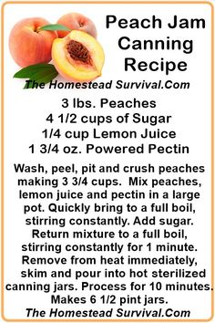 Peach Jam Canning Recipe ~ The Homestead Survival - Homesteading & Food Storage