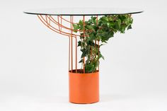 an outdoor table with the right attitude -MERMELADAESTUDIO products