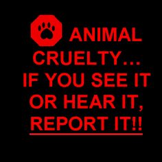 Stop Animal Cruelty Quotes | Stop Animal Cruelty Signs Become a stop animal…