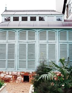 Love These Pale Blue Shutters