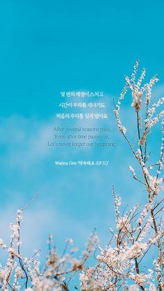 Best Quotes Lyrics Kpop Wanna One 27 Ideas K Quotes, Lyric Quotes, Best Quotes, K Pop, Korean Phrases, Korean Words, Song Lyrics Wallpaper, Wallpaper Quotes, W Kdrama