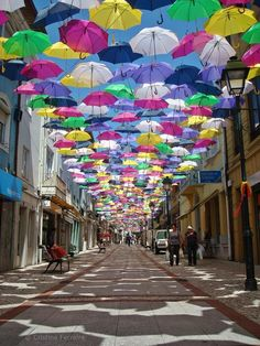 portal of semiotic umbrellas New Colorful Canopy of Umbrellas Graces the Streets of Portugal - My Modern Met