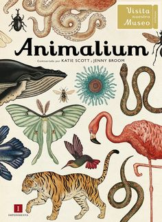 Animalium Welcome to the Museum By Katie Scott. See the story of evolution unfold and discover Darwin's secrets in this chronologically compiled collection of animal specimens. Large, high quality format makes this the ultimate gift for book lovers.
